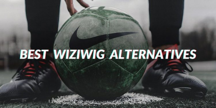 Best Wiziwig Alternatives