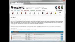 WiziWig New